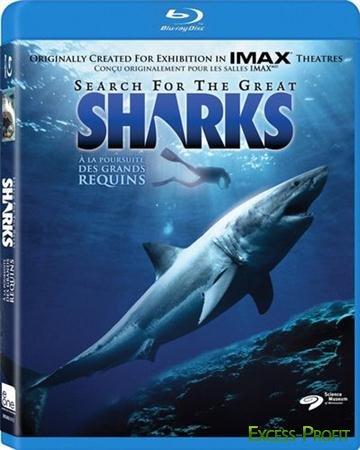 � ������� ���������� ���� / Search for the Great Sharks (1995) BDRip 720p