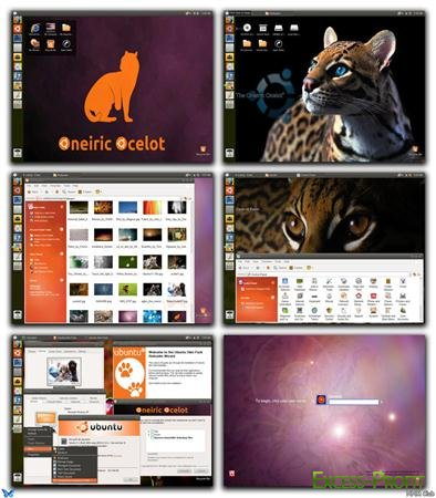 Lion Skin Pack For XP 4.0 / Ubuntu Skin Pack For XP 5.0 / Windows 8 Skin Pack For XP 4.0 (ML/RUS)