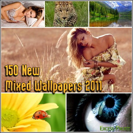 150 New Mixed Wallpapers 2011