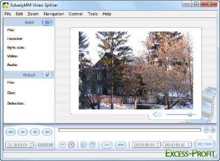 SolveigMM Video Splitter 2.5.1110.17 Final Multilanguage Portable