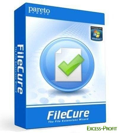 ParetoLogic FileCure 2.0.0.21