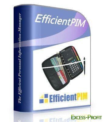 EfficientPIM 3.0 Build 312