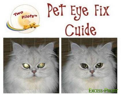 Pet Eye Fix Guide 1.2