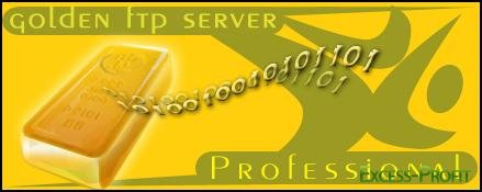FTP Server Golden Pro