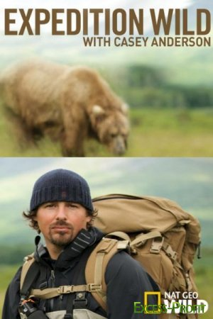 В мире медведей / Expedition Wild (2010) SATRip
