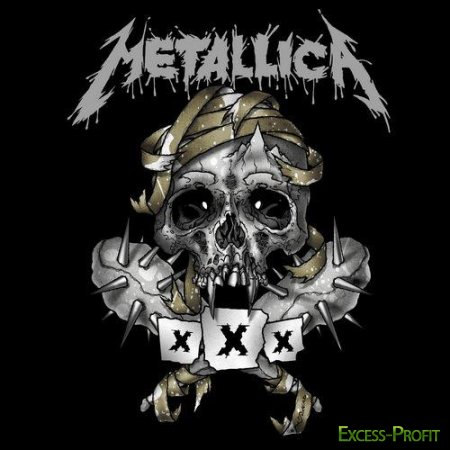 Metallica - 30th Anniversary Show's in The Fillmore. Third Show (2011)