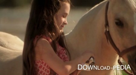 ��������� � ���� / Princess and the Pony (2011 / DVDRip)