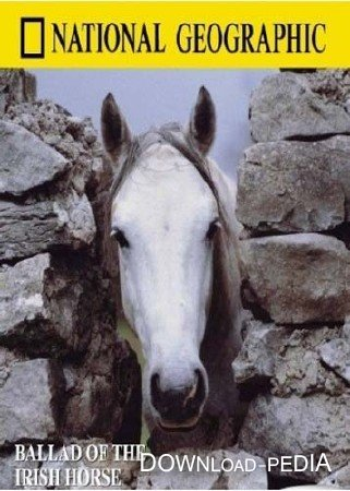 ���������� ������� / Ballad of the Irish horse (1985) DVDRip