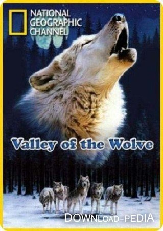 ������ ������ / Valley of the Wolves (2007) SATRip