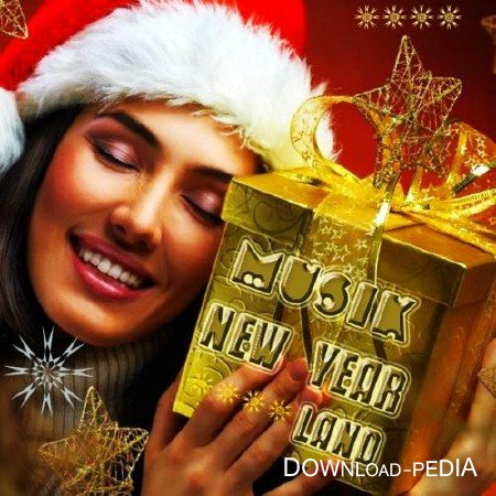 Musik New Year Land (2012)