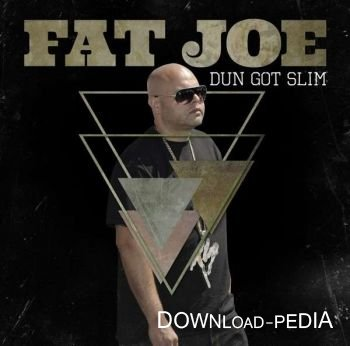 Fat Joe - Dun Got Slim (2013)